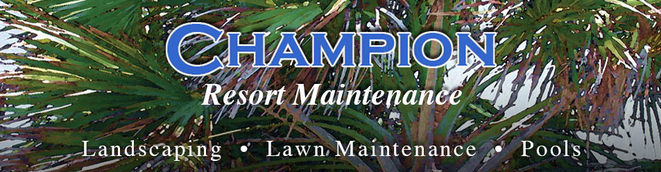 Champion Resort Maintenance